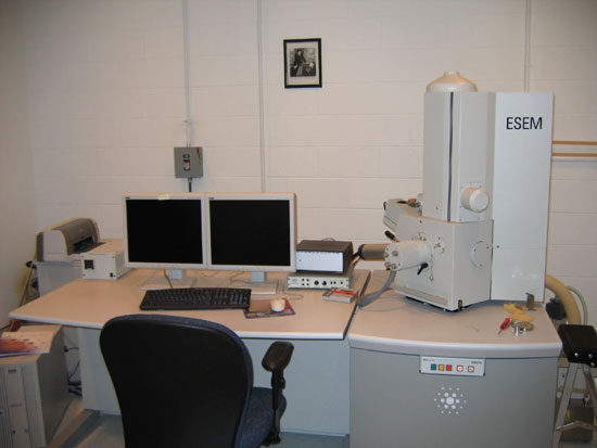 Environmental Scanning Electron Microscope
